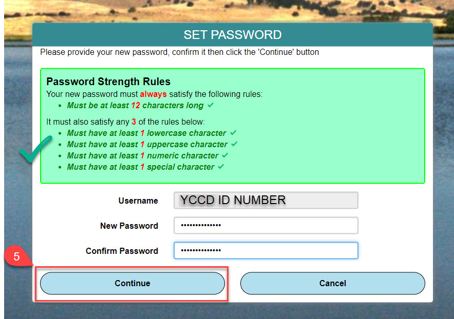 Image of the Set Password screen with the Password Strength Rules and an example of a correct password typed in the text box